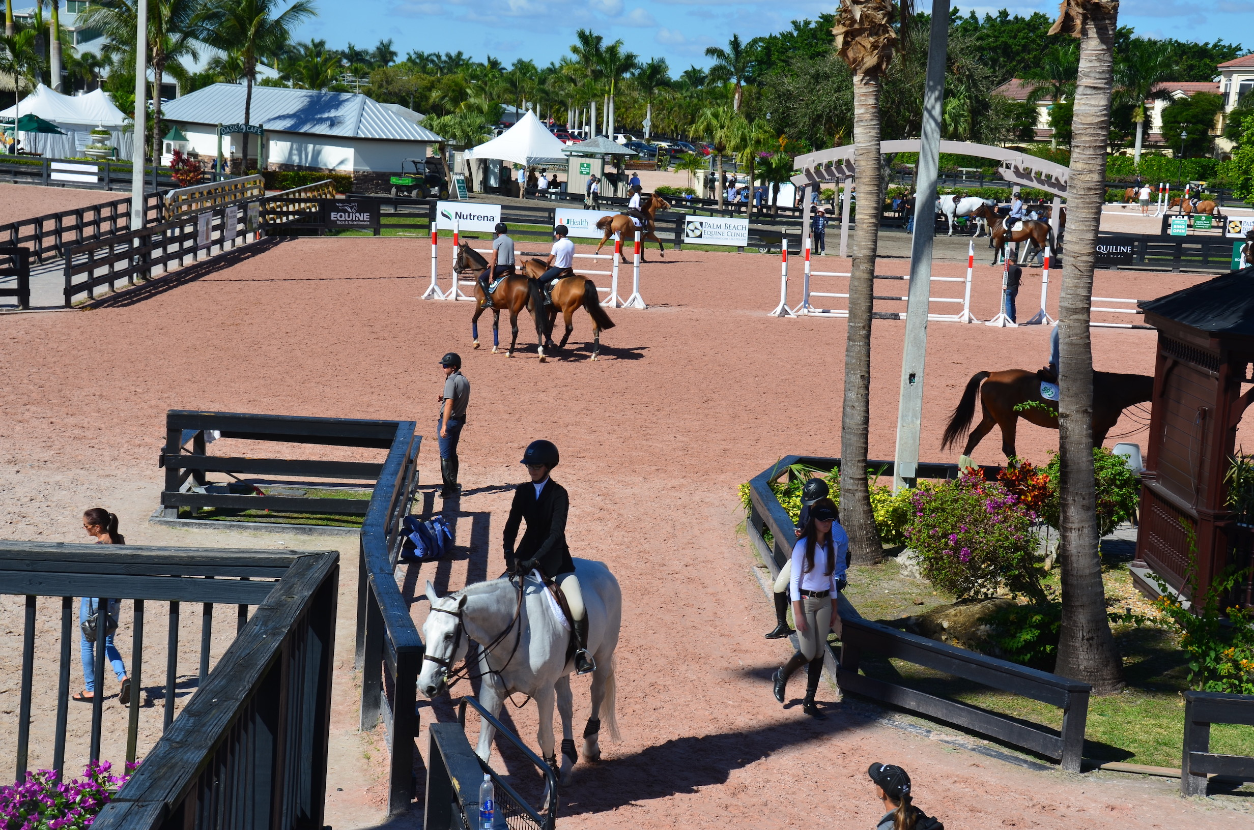 Must Visit Wellington Fl The Winter Equestrian Capital